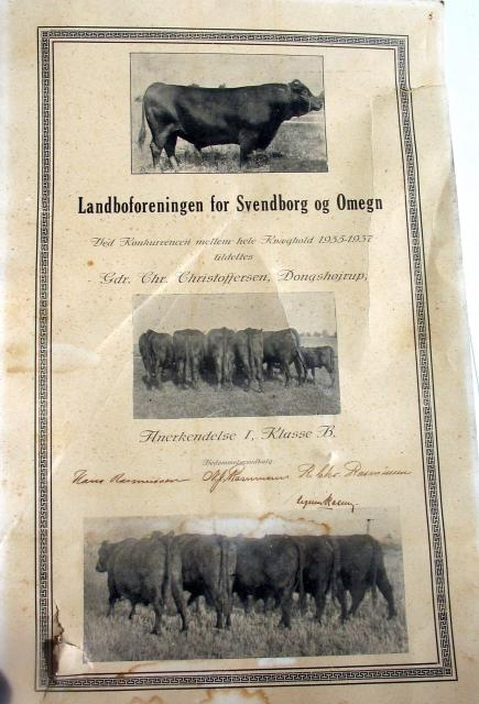 Diplom for kvæghold 1935-37