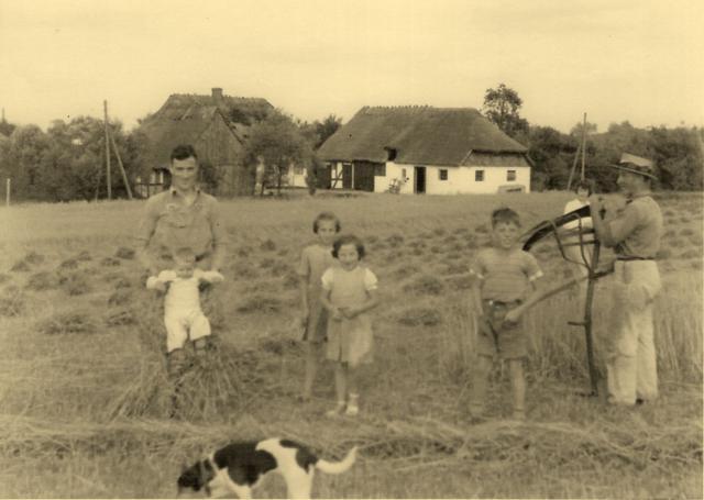 Høst med mejetøj