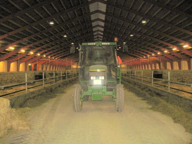 Den færdige kvægstald ved Dongsgaard