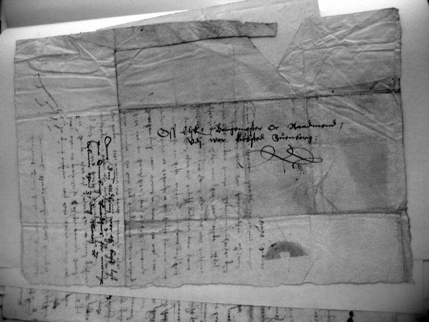 Kongebrev 24. marts 1564 (3)
