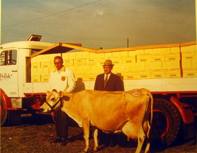 En ko livsydelse i smørpakker