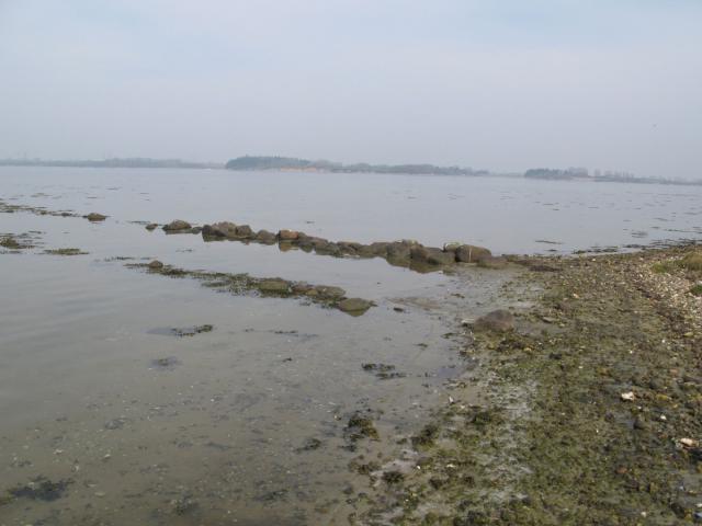 Ældre landingssted ved stranden på Torbenhoved – i baggrunden Svinø.
