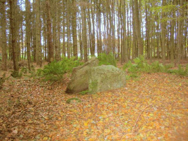 Fredet runddysse ved Ullemose i Øster Skerninge sogn