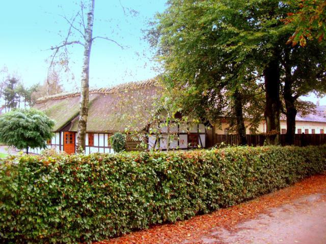 Høje gård (Høje by, Lunde sogn)