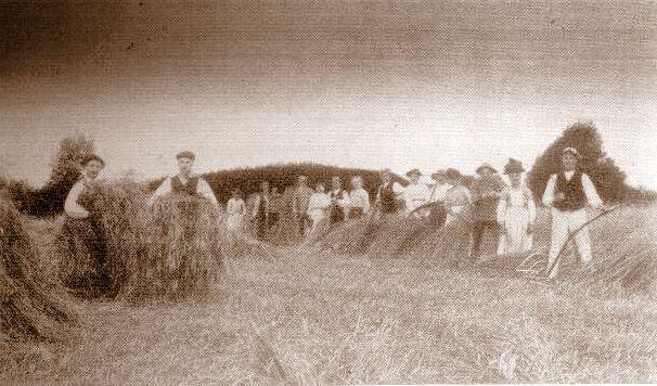 Høst ved Egeskov 1910