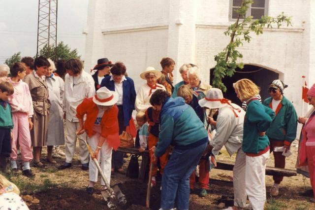 Kvindeegen ved Egebjerg Mølle 1990