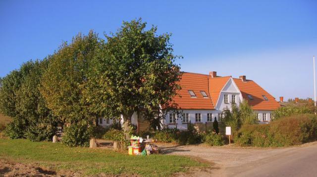 Skovlyst i Vester Skerninge