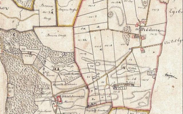 Skjoldemose med omgivelser 1816