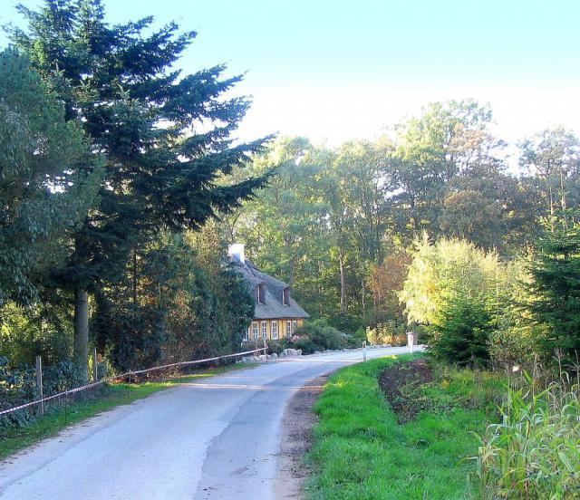 Skovgyden i Vester Skerninge