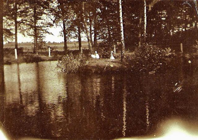 Skovsøen ved Holevgård