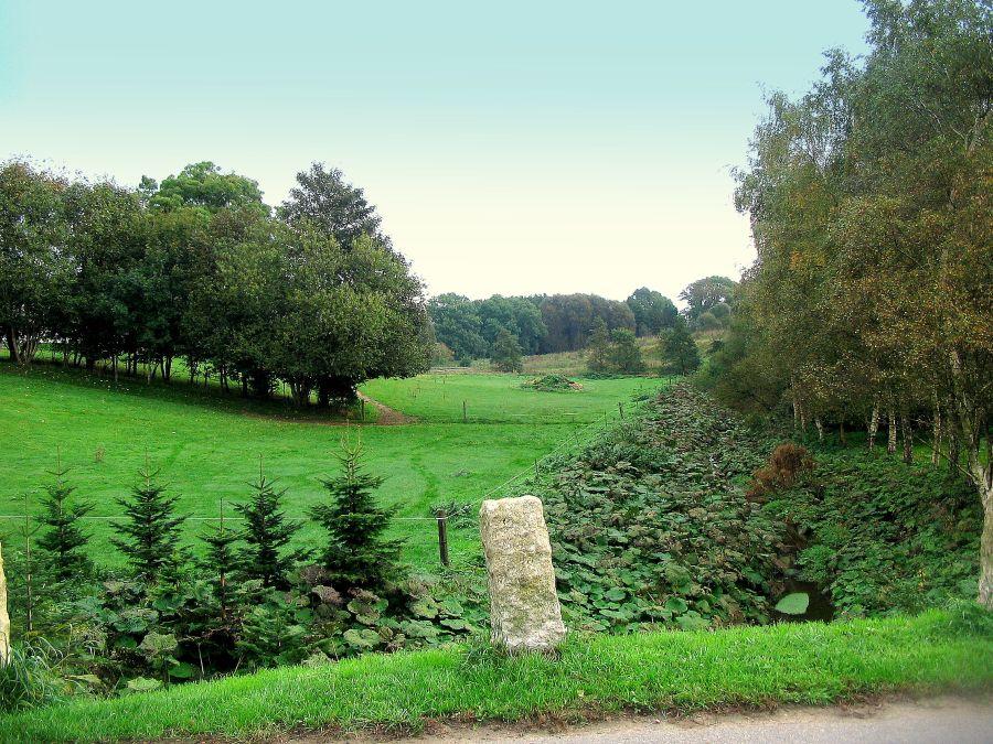 Her græssede Kirkeby-bøndernes køer